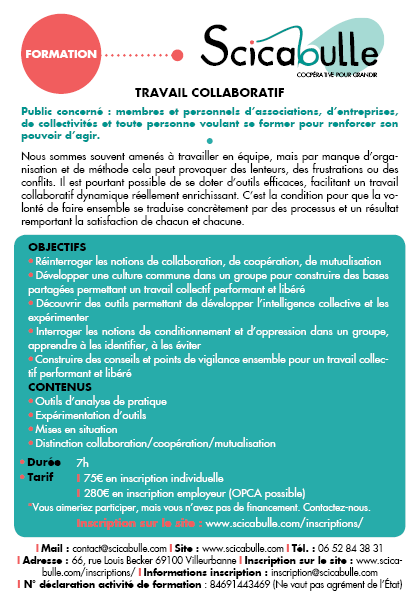 Formation Travail Collaboratif